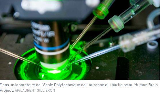 La recherche sur le cerveau et le graphène choisie par l'UE pour des financements – Le Monde
